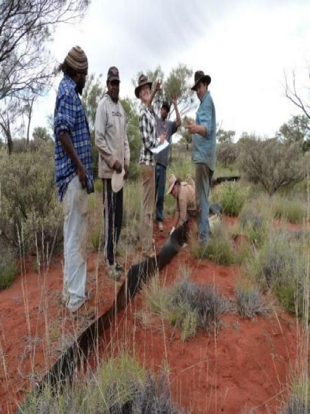The rangers identifying lizards in traps with AWS