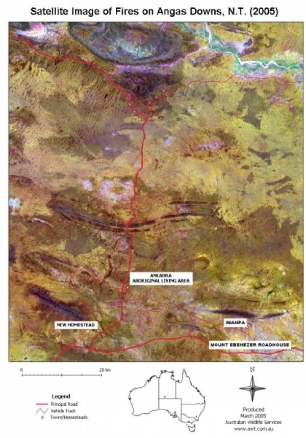 satellite-image-of-fires-layout-image-2