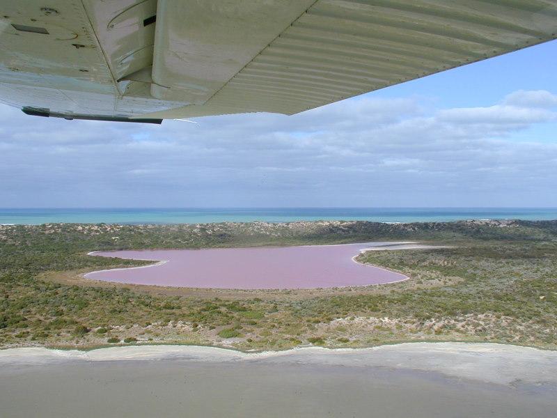 Coorong Wetlands