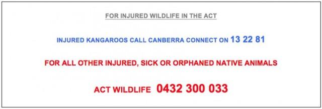 Wildlife Care